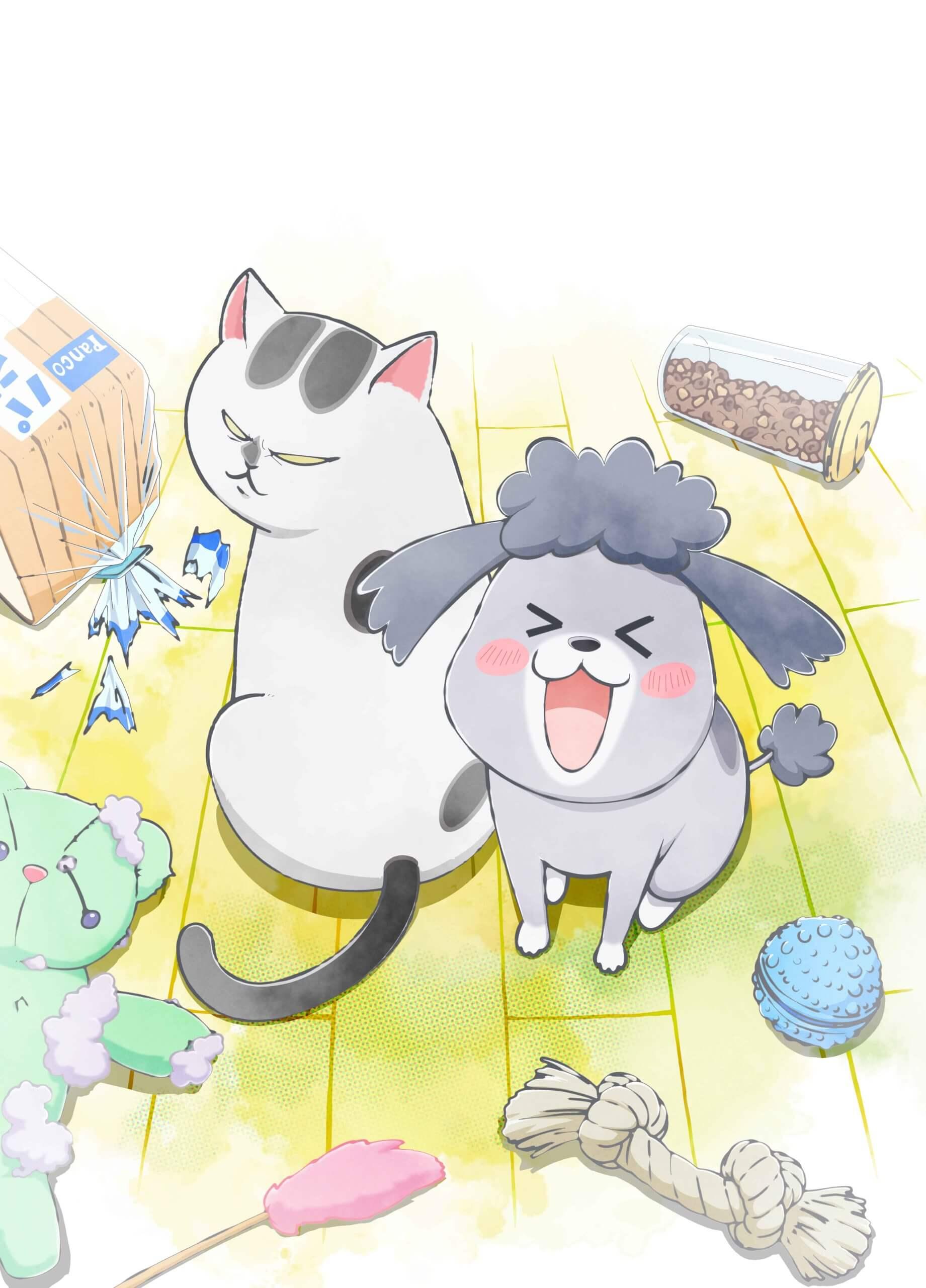 犬と猫どっちも飼ってると毎日たのしいの画像 p1_6